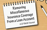Removing Miscellaneous Insurance Coverage from a Loan Account