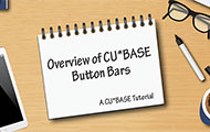 Overview of CU*BASE Button Bars